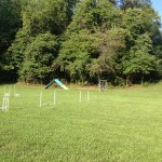 Dog Training Field with our Agility Equipment